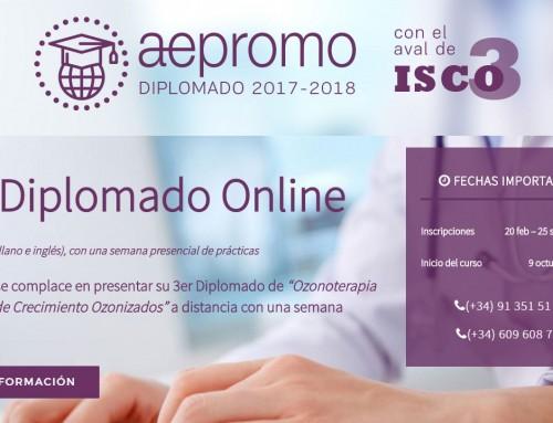 Inicia el 3º Diplomado bilingüe a distancia